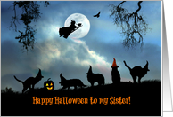 Happy Halloween To Sister Fun Witch and Black Cats in Hats card