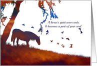 Equine, Horse Sympathy for Loss of Horse Spiritual card