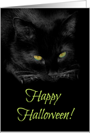 Happy Halloween Cool Black Cat Card