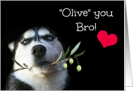 Cute and Humorous Brother Happy Father's Day, Husky Dog card