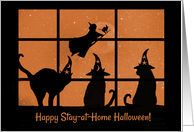 Happy Halloween Coivd Shelter At Home Cute with Cats and Witch card