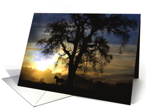 sunset horse silhouette sympathy card (543516)