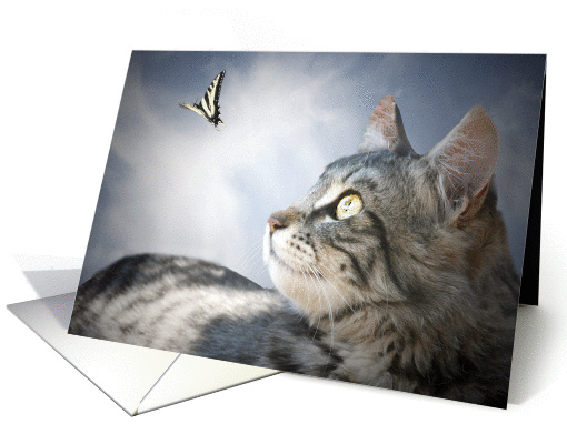 thank you for cat sitting, cat and butterfly card (654844)