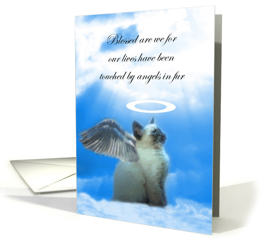Kitty Cat Angel Sympathy, Loss of Cat, Siamese Cat Sympathy, card
