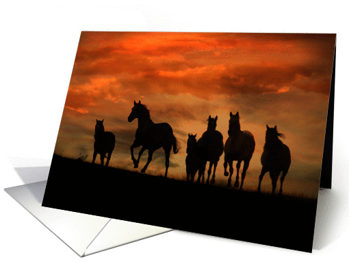 Herd of Horses Equine Sympathy card (981539)