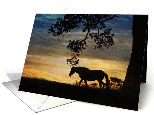 sympathy card for veterinarians horse and sunset card (987653)