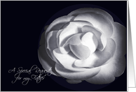 Father Special Request Wedding White Rose card