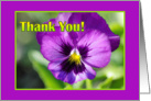Thank You - Purple Pansy - You're the Best card