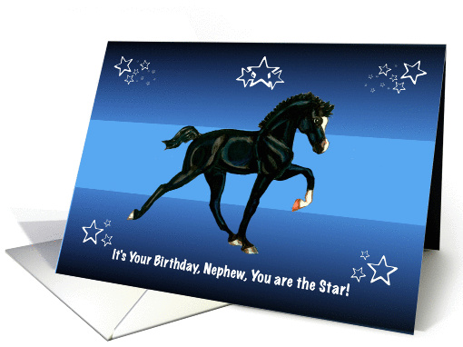 You are the Star, Nephew Birthday with Horse Colt card (1131686)