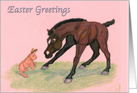 Easter Greetings Arabian Foal card