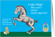 Lippizan Foal Easter card