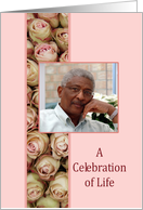 Celebration of Life Funeral/Memorial service - pink roses Photo card
