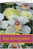 Happy Mothering Sunday Card - White Orchid card