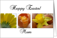 mum happy easter - yellow spring flower easter collage card