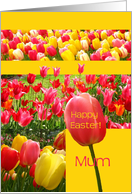 mum Happy easter -pink and yellow tulips easter collage card