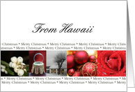 Hawaii State specific card red, black & white Winter collage card