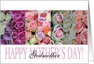 Happy Mother's Day, mixed pastel roses for Godmother card