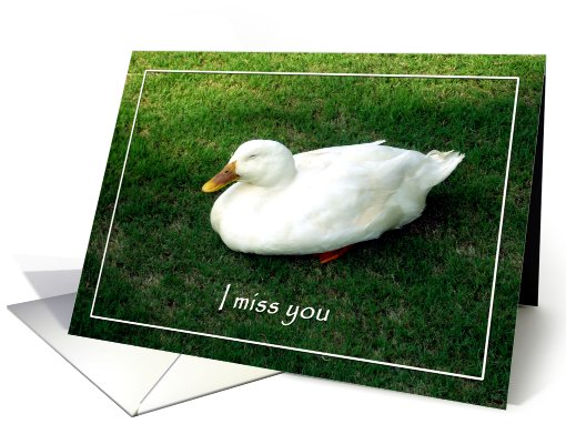Miss you husband - Lonely duck card (629680)