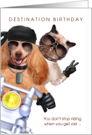 Funny Motorcycle Rider Birthday with Cat and Dog card