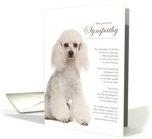 White Poodle Dog Pet Sympathy Euthanasia card (1514854)