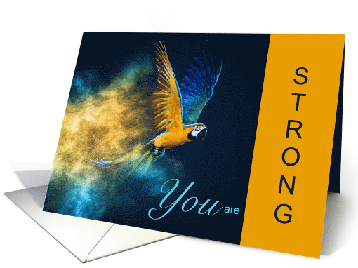 Blue and Gold Macaw Encouragement for Bird Lover card (1522232)