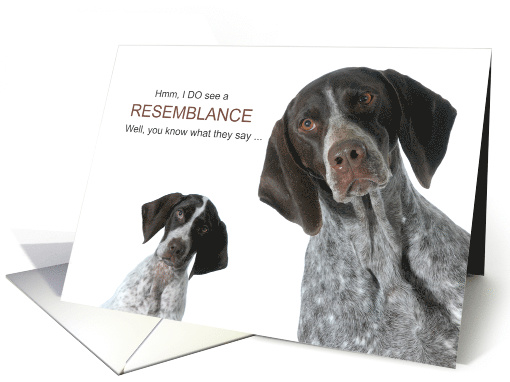 Funny Birthday from the Dog English Shorthaired Pointers card