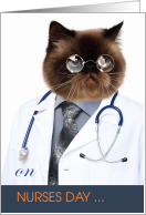Happy Nurses Day from a Funny Doctor Cat card