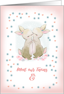 Twins. Birth Announcement., girl bears card