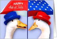 Happy 4th of July. Funny Duck Pair card