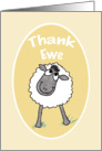 Fun Cute Sheep 'Thank Ewe' Thank You Card