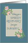 Get Well from Surgery Card, Pink Dogroses on Blue and Taupe card