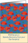 Speedy Recovery Card from Eye Surgery, Red Field Poppies card