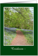 Custom Front Congratulations Card, Welsh Greeting, Bluebell Woods card