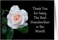 Best Grandmother Grandparents Day card