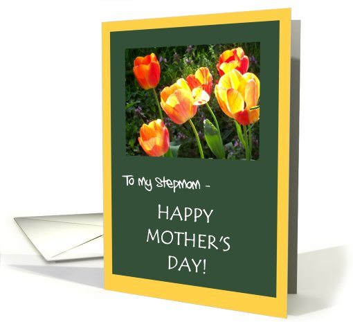 Mother's Day Card - for Stepmom card (801249)