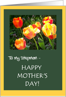 Mother's Day Card - for Stepmom card