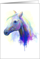 Abstract multi-coloured head horse.Blank Note card
