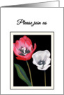 Invitation Engagement Party Tulips Side by Side Print card