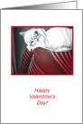 Valentine's Day Handpainted White Cat Print in Red Black & White card