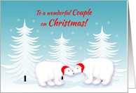 Lesbian Couple Christmas Humor Snuggling Polar Bears in Snow card