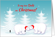 Gay Dad Christmas Humor Snuggling Polar Bears in Snow card