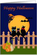 Halloween with Three Black Cats gazing at a Harvest Moon and Bats card
