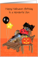 Birthday On Halloween to Son with a Pomeranian in a Bug Costume card