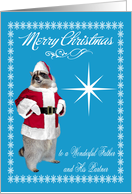 Christmas to Father and Partner, raccoon Santa Claus, snowflakes card