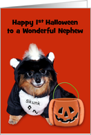 1st Halloween to Nephew, Pomeranian in Skunk costume on orange card