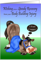 Get Well, Body Building Injury, sick horse with blue blanket, harness card
