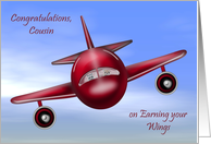 Congratulations To Cousin, pilot's license, raccoons flying a plane card