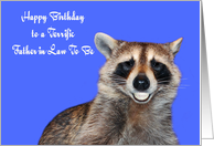 Birthday To Father In Law Be Raccoon Smiling Pearly Dentures Card