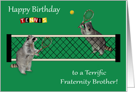 Birthday to Fraternity Brother, Raccoons playing tennis with rackets card