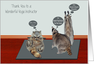 Thank You To Yoga Instructor, general, raccoons attempting yoga card
